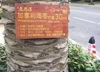 平海逸龙湾