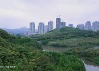 郑州雅颂居(嘉里中心)