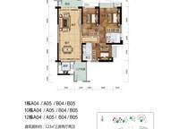 1栋A04、05 B04、05户型图 3室2厅2卫1厨 123.00㎡