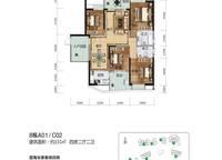 8栋A01、C02户型图 4室2厅2卫1厨 151.00㎡