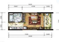 A2户型 1室0厅1卫1厨 43.00㎡