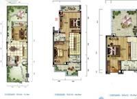 雅居乐月亮湾别墅户型图D1 4室3厅4卫1厨 180.00㎡