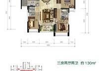 9B3a02户型 三房两厅两卫 130㎡ 3室2厅2卫1厨 130.00㎡
